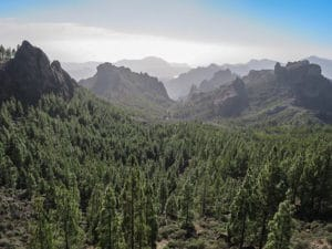 Gran Canaria Shore Excursions: In the interior you will find spectacular landscapes.