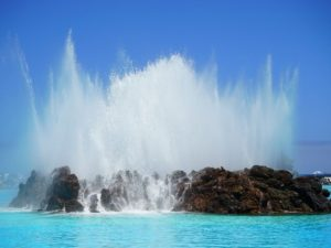 Tenerife-Shore Excursion: Spectacular Scenes on Lake Martianez