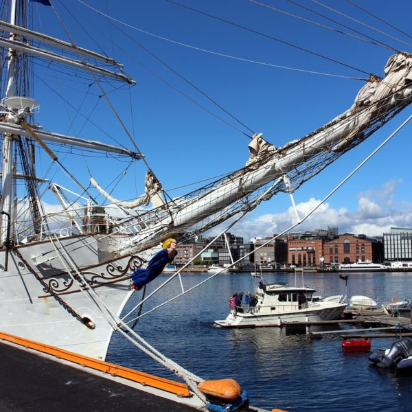 Shore excursion in Oslo: Magnificent ships anchored in the port of Oslo