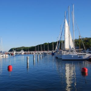 Shore Excursion in Gdansk: View of the Marina of Gdynia