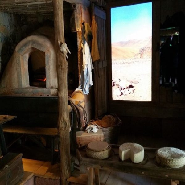 """Shore excursion on Fuerteventura: The Finca """"Pepe"""" - Museum and cheese dairy"""